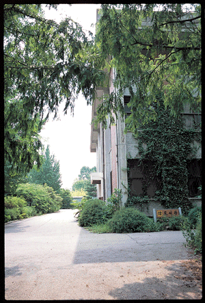 유신의 배를 가른 지성의 숨결 서울농대 수원캠퍼스 사진