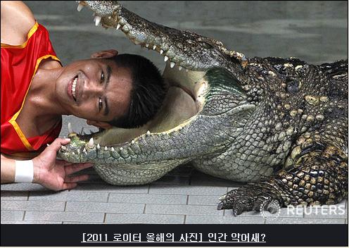 2011 로이터의 통신 스페셜 사진들.....